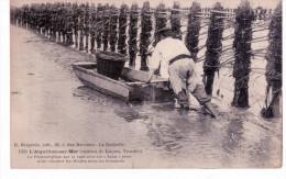 """L ' Aiguillon Sur Mer - Le Pêcheur Glisse Sur La Vase Avec Un """"Açon"""" - Sables D'Olonne"""