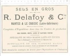 Pub Publicité 1899 Sels Marins En Gros R. Delafoy & Cie Nantes Le Croisic / Sel Raffiné Marin  /146/ARL-5 - Werbung