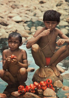 VENEZUELA - Sanemas Indians Eating Merey - Nude - Nu - Ethnics - Venezuela