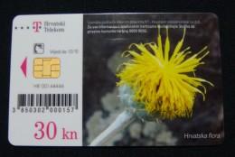 CROATIA 30 KN 2010 CHIP CARD FLORA, EXCELLENT QUALITY. - Croatia