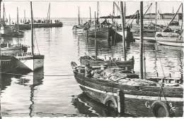CPSM 44 - Le Croisic - Le Port à Marée Haute - Le Croisic