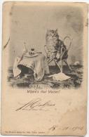 Chat & Pipe. Where's That Waiter. Photo Landor. - Katten