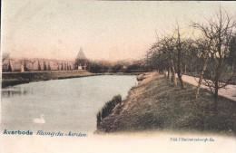 Averbode Etang Du Jardin ( Zwaan ) - Scherpenheuvel-Zichem