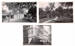 Lot De 3 Photographies à Cestas Gazinet En 1924 Et 1937 - Maison Immeuble Et Jardin - Luoghi