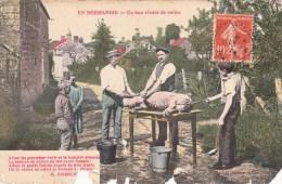 14. - CPA. - EN NORMANDIE - BOULON - Un Bon Vivant De Moins Cochon - Edit. Henri Ermice Vire (état) - France