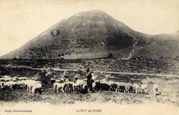 63 Le Puy De Dome Berger Et Troupeau De Moutons - Non Classificati