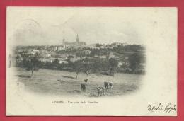 Lobbes - Vue Prise De La Grattière - édit : Wilmet, Gilly- 190? ( Voir Verso ) - Lobbes
