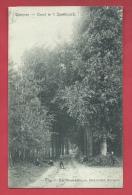 Wetteren - Dreef In 't Speelbosch - 1907 ( Verso Zien ) - Wetteren