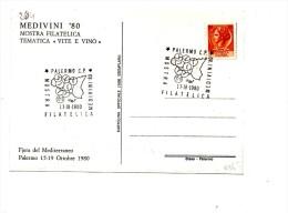 Fb264 - ITALIA 1980 , Palermo Medivini Tematica Vite E Vino - Vini E Alcolici