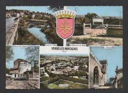 DF / 81 TARN / VIVIERS-LES-MONTAGNES / VUE GENERALE ET DIVERS ASPECTS DE LA COMMUNE / CIRCULÉE EN 1977 - France