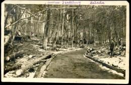 Wolhynien, Waldlager, 24.3.1916, FOTO, Deckung, Küche, WK1, WW1, - Ukraine