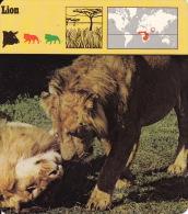 1975 - Editions Recontre - Lion - Animaux