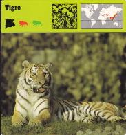 1975 - Editions Recontre - Tigre - Animaux