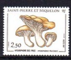 SAINT PIERRE ET MIQUELON N° 475 NEUF * * LUXE - Lettres & Documents