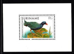 Surinam MNH Scott #725a Souvenir Sheet 1g American Purple Fowl - Surinam