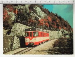 Chemin De Fer Yverdon-Sainte-Croix (YsteC) Automotrice Be 4/4 Le Long Des Rapilles - Trains