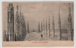 Italy Italia Milano Lombardia Milan Cattedrale Dettaglia Carte Postale 1900 Post Card Postkarte POSTCARD - Milano