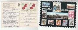 1972 Cheb CZECHOSLOVAKIA  Flower Stamps COVER (Postcard Illus CZECH STAMPS By POST STAMP COLLECTING SERVICE) - Czechoslovakia