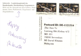 17H : Germany Dinosaur Owl Shark Fossil Bones Stamp On Schwerin Postcard - Archaeology