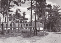 Grote Kaart Westmalle Provinciaal Scoutsdomein Drieboomkensberg - Malle