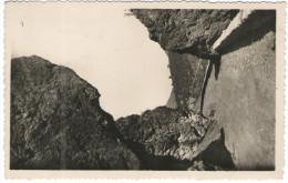 FRANCIA - France - 1949 - 2 X 4F - Corse - L'Insecca - Viaggiata Da Ghisoni Per Toulon, France - France