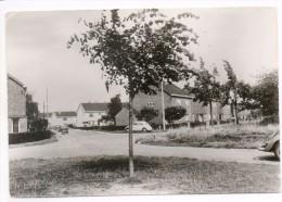 33017  -  Hermalle  Sous  Argenteau    Nouvelle Cité - Ohne Zuordnung