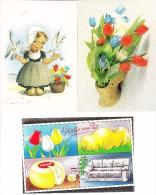 6 POSTKAARTEN:  KLOMPEN, TULPEN/ BLOEMEN / WOODEN SHOES, TULIPS / FLOWERS -  Holland/Nederland - Bloemen