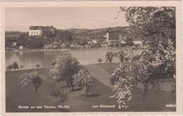 AK - OÖ - Grein Zur Blütenzeit - 1932 - Grein