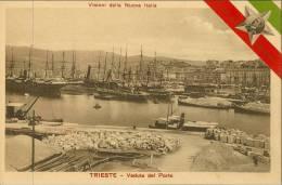 TRIESTE -   VISIONI DELLA NUOVA ITALIA  F.P. Animata - Trieste