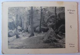 DEUTSCHLAND - BADEN-WÜRTTEMBERG - SCHÖNAU - Albert Leo Schlageter Memorial - Deutschland