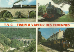 30 SAINT JEAN DU GARD TRAIN A VAPEUR DES CEVENNES ANDUZE GARE CHEMIN DE FER  GARD - Saint-Jean-du-Gard