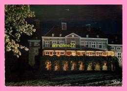CPM BELGIQUE- OTEPPE L Hirondelle , Illuminations Le Chateau - Burdinne