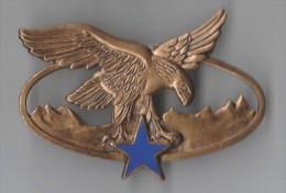 INSIGNE BREVET SPECIALITE TROUPES DE MONTAGNE , Dos Guilloché Embouti - DRAGO PARIS G 2465 - Landmacht