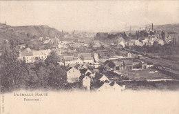 Flémalle-Haute - Panorama (gare, Edit Thiry, Train Vapeur, 1904) - Flémalle