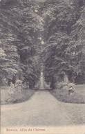 Rosoux - Allée Du Château (Edit Teheux-Hovent, 1910) - Waremme