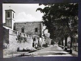 TOSCANA -FIRENZE -RONTA -F.G. LOTTO N°504 - Firenze