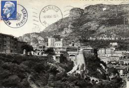 MONACO Le Palais Du Prince Et La Tête De Chien  Carte écrite En 1950  2 Scans  Au Dos PUB MONACO - Monaco