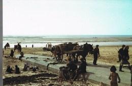 Le Cotentin Pittoresque . Retour Et '' Remontée '' Des Pêcheurs De Lichens à Marée Montante . - Francia