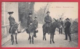 Le Plessis-Robinson  - ROBINSON * 1908 * Promenade à Anes *  Animation ♥♥♥♥  * VOIR Scan Recto/v - Le Plessis Robinson