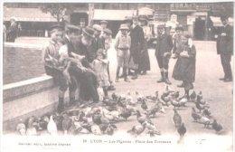 Lyon - Les Pigeons Sur La Place Des Terreaux - Lyon