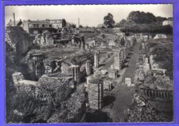 Carte Postale 59. Bavay Les Fouilles Gallo-Romaines  Trés  Beau Plan - Bavay