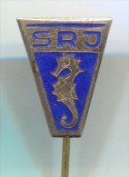 DIVING - Underwater Activities, RSJ Yugoslavia Association, Vintage Pin Badge, Enamel - Tauchen