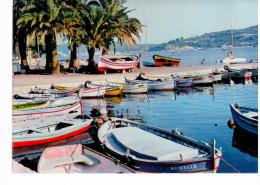 Tamaris - Le Petit Port - Tamaris