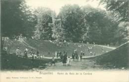 BRUXELLES - Ravin Du Bois De La Cambre - Bossen, Parken, Tuinen