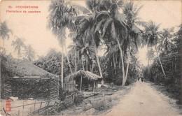 "04922 ""COCHINCHINE - VIETNAM - PLANTATIONS DE COCOTIERS"" ANIMATA. CART. POST. ORIG. NON SPEDITA. - Vietnam"