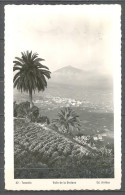 ISLAS CANARIAS , TENERIFE , VALLE DE LA OROTAVA , ED. ARRIBAS Nº 82 , SIN CIRCULAR - Tenerife