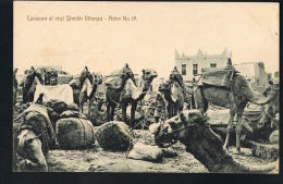 ADEN -JORDANIE - Caravan At Rest  Sheikh Othman -Aden N° 19 -Recto Verso -Paypal Free - Jordanie