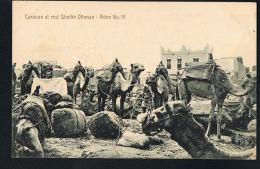 ADEN -JORDANIE - Caravan At Rest  Sheikh Othman -Aden N° 19 -Recto Verso -Paypal Free - Jordan