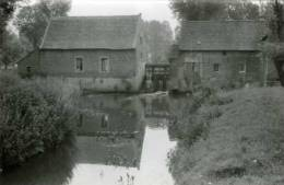 TOLLEMBEEK (Vl. Brab.) - Molen / Moulin - Wielantmolen Op De Marke (opname: 1979) - Sfeervolle Opname. - Galmaarden