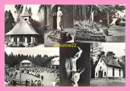 CPSM  Belgique BANNEUX  N.D Vierge Des Pauvres - Sprimont